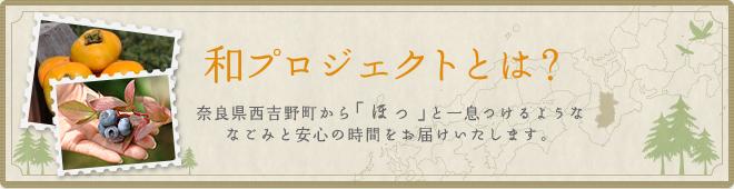 和-nagomi-プロジェクトとは?