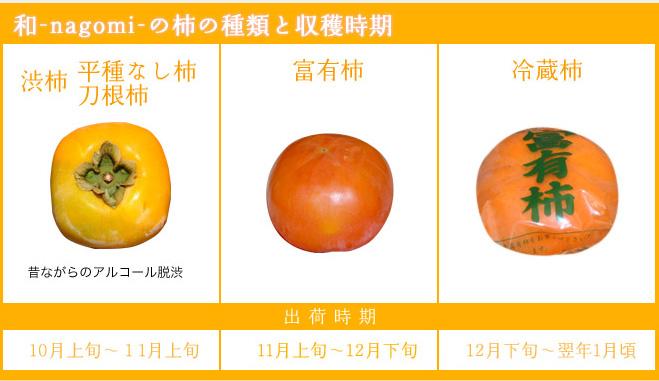 「なごみ」の柿の種類と収穫時期