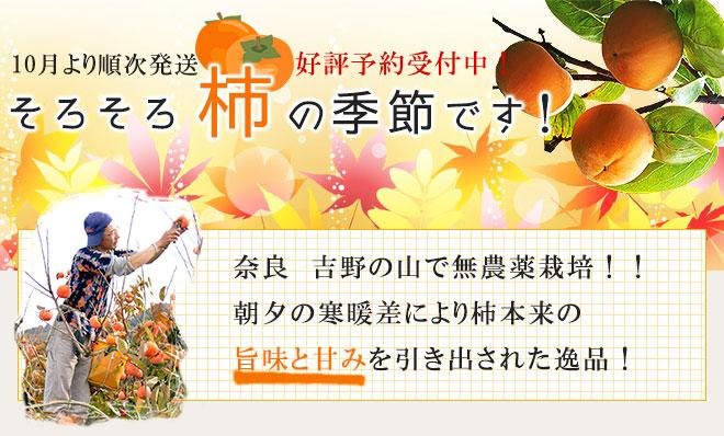 奈良県産の柿 好評予約受付中【堀内農園】