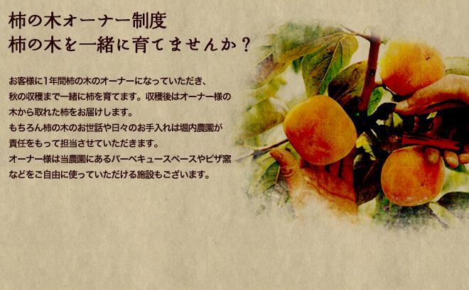 柿の木オーナー制度柿の木を一緒に育てませんか?「お客様に1年間柿の木のオーナーになっていただき、秋の収穫まで一緒に柿を育てます。収穫後はオーナー様の木から取れた柿をお届けします。もちろん柿の木のお世話や日々のお手入れは堀内農園が責任をもって担当させていただきます。オーナー様は当農園にあるバーベキュースペースやピザ窯などをご自由に使っていただける施設もございます。」【堀内農園】